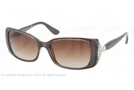 Bvlgari  0BV8099B 986/13 TURTLEDOVE