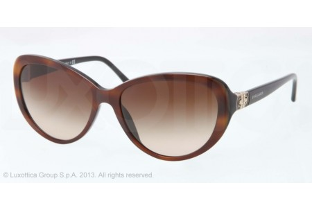 Bvlgari  0BV8131B 879/13 TOP HAVANA ON BLACK