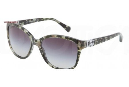 Dolce & Gabbana ICONIC LOGO 0DG4162P 26558G GREEN MARBLE