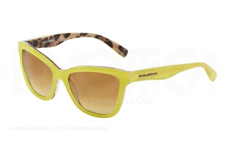 Dolce & Gabbana  0DG4237 28842L TOP OPAL YELLOW/LEO