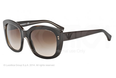 Emporio Armani 0EA4031 522213 TRANSP BROWN/DARK BROWN
