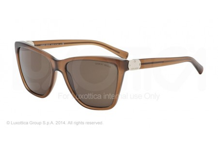 Giorgio Armani 0AR8035 504473 TRANSPARENT BROWN