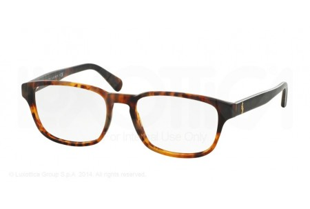 Polo  0PH2124 5494 VINTAGE JERRY TORTOISE
