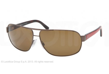 Polo 0DG2107 0PH3066 901183 SHINY DARK BROWN POLARIZED