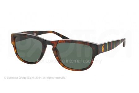 Polo  0PH4086 545471 SHINY JC TORTOISE