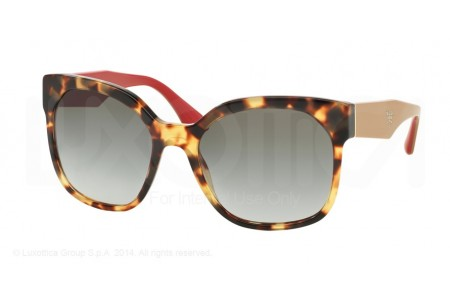 Prada VOICE 0PR 10RS 7S00A7 MEDIUM HAVANA