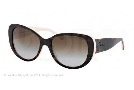 Ralph Lauren  0RL8114 5451T5 TOP DARK HAVANA/CREAM POLARIZED