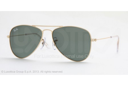 Ray-Ban Junior  0RJ9506S 223/71 GOLD