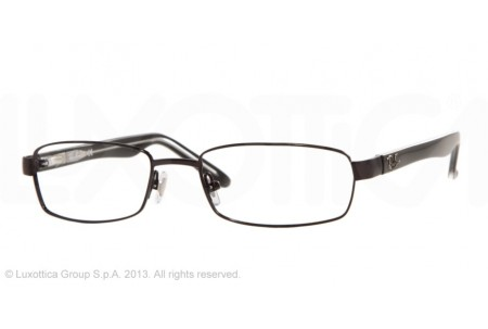 Ray-Ban 0RX8581 1017 SHINY BLACK