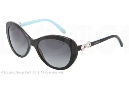 Tiffany  0TF4059 80013C BLACK
