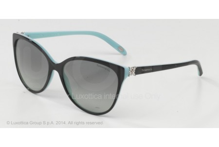 Tiffany  0TF4089B 80553C BLACK/BLUE