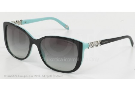 Tiffany  0TF4090B 80553C BLACK/BLUE