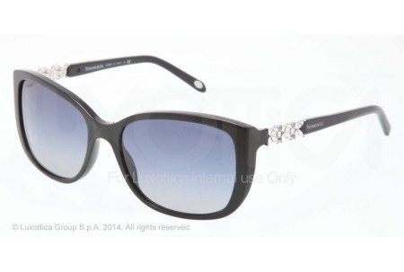 Tiffany  0TF4090B 80014L BLACK
