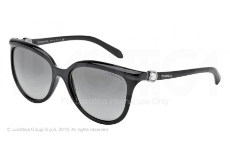 Tiffany  0TF4093H 80013C BLACK